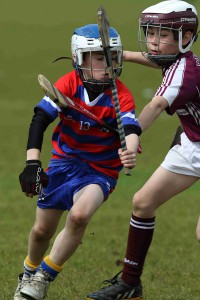 Bríd Óg Hurling/Camogie Newsletter 3 Feb 2016
