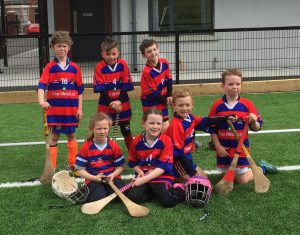 Bríd Óg Hurling/Camogie News