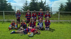 Bríd Óg Hurling Camogie News 22 July 2016