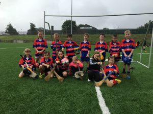 Brid Óg Hurling/Camogie Newsletter 2 September 2016