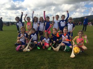 Camogie and hurling news 3rd October 2016
