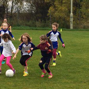 St Brigid's U8 Girls shine again at Gort na Móna