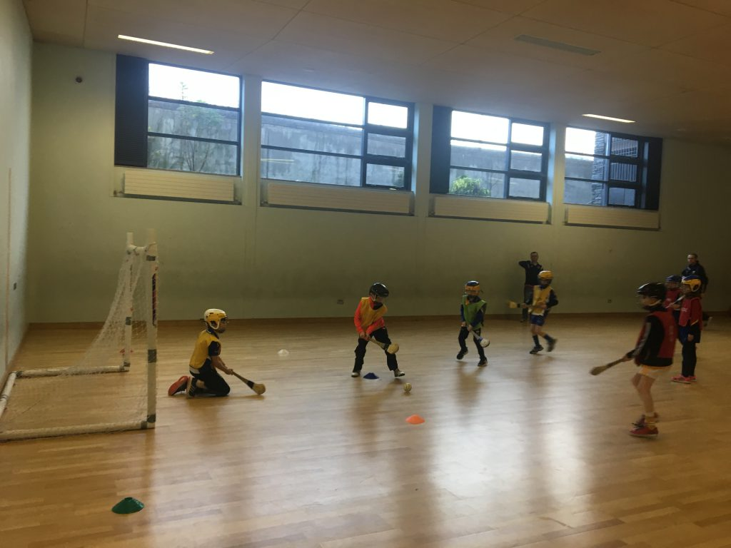Camogie and Hurling Newsletter 26 January 2017