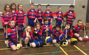 N Antrim Indoor Hurling League U8