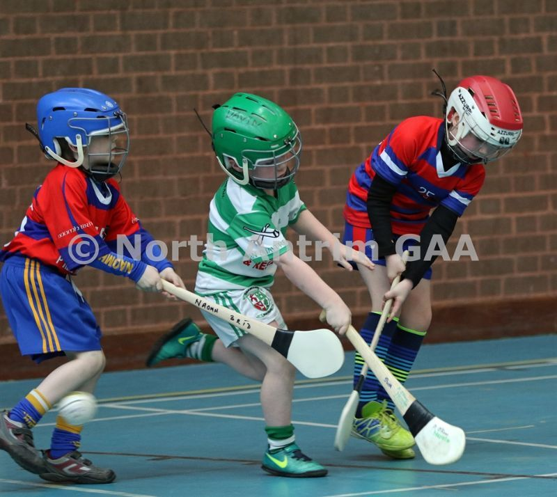 Hurling and Camogie News