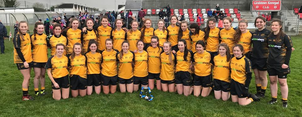 St Brigid's Ladies Footballers Excel On The Inter-County And Provincial Stage…While Minor Ladies Muck In At HQ!