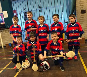 Strong Week For Brid Og Hurlers As U8s Qualify For Top Tier!