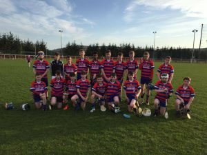 Brid Og Just Miss Out On Feile Final Spot