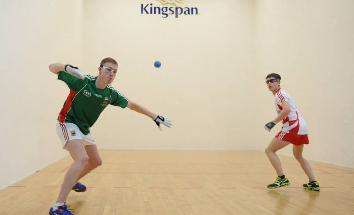 Interested In Playing Handball With Naomh Brid?