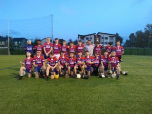 Bríd Óg U14s Lose Out In County Final